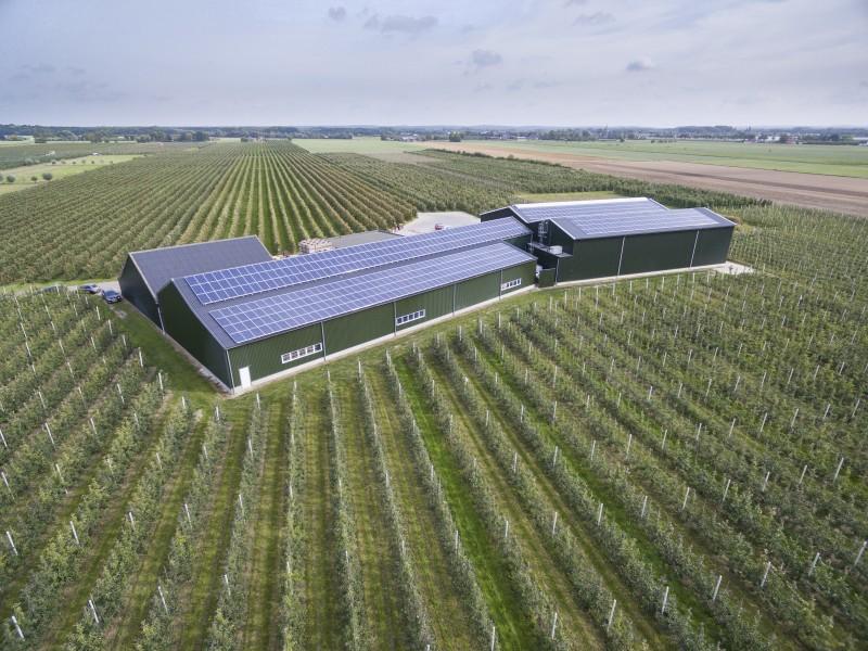 zonnepanelen, fruitbedrijf, canadian solar, SDE+, Energieplusdak