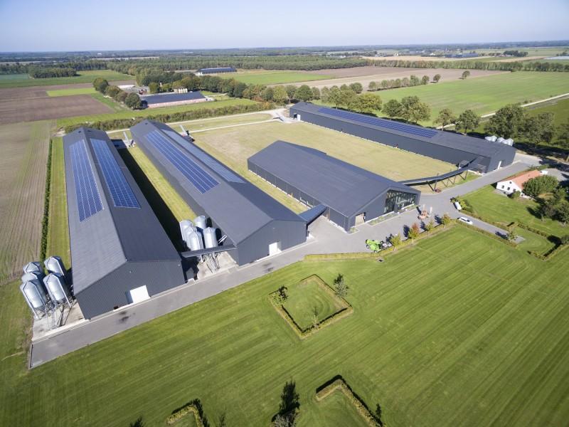 Zonnepanelen Ysselsteyn - Limburg