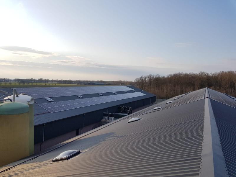 Zonnepanelen Oirlo - Limburg